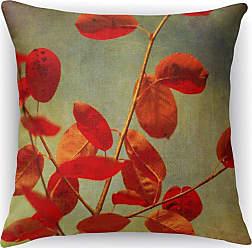 Kavka Designs October Curtain Call Accent Pillow - IDP-DI16-16X16-BOB008