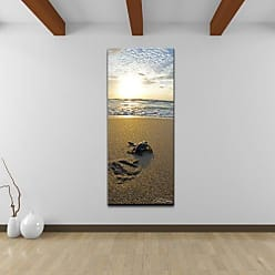 Ready2HangArt Baby Sea Turtle Coastal Contemporary Photograph Canvas Wall Art Print, 40 x 20, Brown, Blue