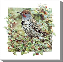 West of the Wind All-Weather Art Print, 24-Inch, Northern Flicker
