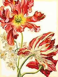 Buyartforless Buyartforless e´tude de tulipes III 16x12 Floral Art Print Poster Painting by Heather Craig Made in The USA
