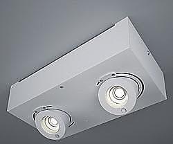 Zaneen Bridge LED 2-Light Flushmount