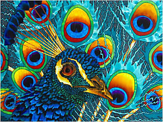 Louis Leonard Art Insane Peacock by Jean-Baptiste Canvas Wall Art - JEB015-18X24