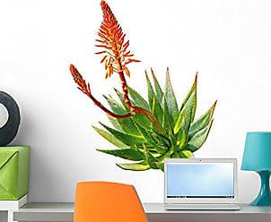 Wallmonkeys Aloe Wall Decal Peel Stick Floral Graphic (24 in H x 21 in W) WM252865