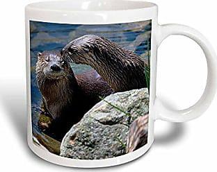 3D Rose mug_113809_3 Otter Love Magic Transforming Mug, 11-Ounce