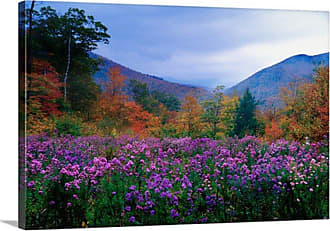 Great Big Canvas New Hampshire Meadow Wall Art - PAG0100233_24_24X16_NONE