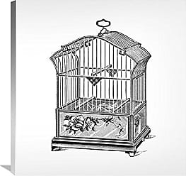 Bentley Global Arts Global Gallery Budget GCS-454827-3030-142 Catalog Illustration Etchings: Birdcage-Gable Top Rose Base. Gallery Wrap Giclee on Canvas Wall Art Print