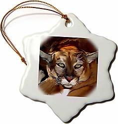 3D Rose 3dRose Cougar Snowflake Porcelain Ornament, 3-Inch
