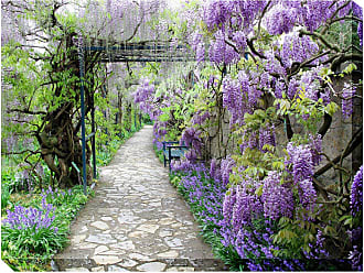 West of the Wind Wisteria Path Outdoor Wall Art - OU-80926 (WISTERIA PATH)