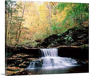 Great Big Canvas Pennsylvania Benton Ricketts Glen State Park Waterfalls Canvas Wall Art Print - 90321_24_24X20_NONE