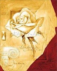 Buyartforless Charming White Rose Art Poster Print by Joadoor, 16x20 Paper
