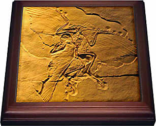 3D Rose trv_16715_1 Archaeopteryx from the Jurassic Germany-Trivet with Ceramic Tile, 8 x 8, Brown