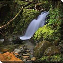 West of the Wind Woodland Falls Outdoor Canvas Art - 24 x 24 in. - 79027-24