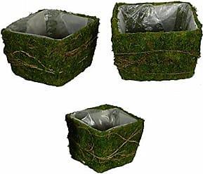 Benzara 3 Piece Decorative Moss and Salim Basket Set, Green