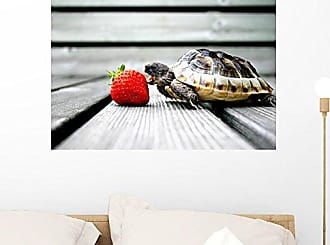 Wallmonkeys WM97385 Turtle Eating Strawberry Peel and Stick Wall Decals (24 in W x 16 in H), Medium