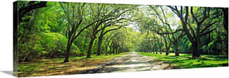 Great Big Canvas Live Oaks and Spanish Moss Savannah Canvas Wall Art - 85285_24_36X12_NONE