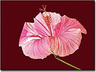 Ready2HangArt Ready2hangart Bruce Bain Hibiscus Blossom II Canvas Art, 12 H x 16 W
