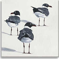 Gallery Direct Seagulls IX Indoor/Outdoor Canvas Print by Rose Hohenberger, Size: Medium - NE73506