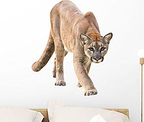 Wallmonkeys Prowling Puma Wall Decal Peel and Stick Graphic (24 in W x 18 in H) WM235559