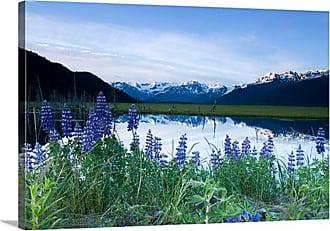 Great Big Canvas Lupine Blooms Along Pond Canvas Wall Art - AKSFLAA0011_24_24X16_NONE