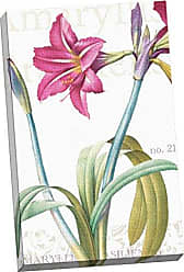 Portfolio Canvas Decor Portfolio Canvas Decor Amaryllis Brasiliensis by IHD Studio Large Canvas Wall Art, 24 x 36