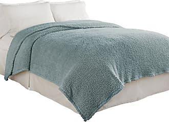 Ellery Homestyles Beautyrest Cosette Ultra Soft Blanket, King, Robins Egg Blue