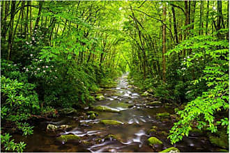 Noir Gallery River in the Great Smoky Mountains Metal Wall Art - LU-06-MP-08
