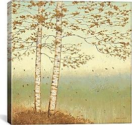 iCanvas ART WAC1710 Golden Birch I with Blue Sky Canvas Print by James Wiens, 37 by 37-Inch, 0.75-Inch Deep
