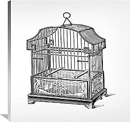 Bentley Global Arts Global Gallery Budget GCS-454813-3636-142 Catalog Illustration Etchings: Birdcage-Gable Top Floral Base. Gallery Wrap Giclee on Canvas Wall Art Print