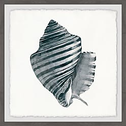 Marmont Hill Striped Queen Conch Framed Painting Print - MH-JULCST-66-GWFPFL-12