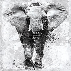 Portfolio Canvas Decor Portfolio Décor Gallery Wrapped Canvas Wall Art, 30x30 Proud Elephant by Carol Robinson 30 x 30