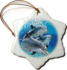 3D Rose orn_4852_1 Dolphins Porcelain Snowflake Ornament, 3-Inch