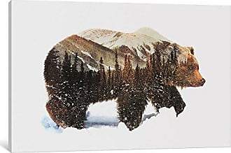 iCanvas ALE82-1PC6-26x18 iCanvas Arctic Grizzly Bear Print by Andreas Lie, 26 x 18