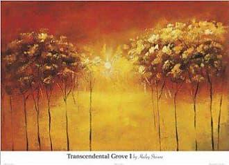 Buyartforless Buyartforless Transcendental Grove I by Hailey Stevens 26x36 Art Print Poster Abstract Painting Sun Trees Orange