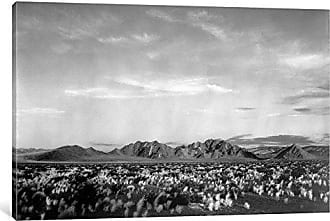 iCanvas ART iCanvas Near Death Valley National Monument Gallery Wrapped Canvas Art Print by Ansel Adams, 18 x 12