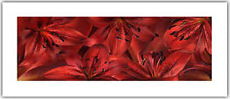 ArtWall Cora Niele Lily Landscape Red Unwrapped Flat Canvas Artwork, 12 by 28-Inch