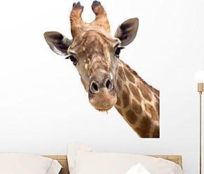 Wallmonkeys FOT-33846052-24 WM10555 Giraffe Closeup Peel and Stick Wall Decals (24 in H x 20 in W), Medium