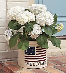 Whitehall USA-Made Americana Welcome Stoneware Crock