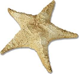 Orlandi Statuary Starfish Pacific Garden Statue - FS8423