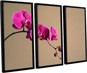 ArtWall Elana Rays Magenta Orchid 3 Piece Floater Framed Canvas Set, 36 x 54