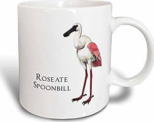 3D Rose mug_51591_3Roseate Spoonbill Shorebird Magic Transforming Mug, 11 oz, Multicolor