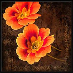 Ptm Images Sunset Primrose I Wall Art - 9-74157