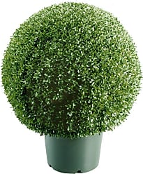 National Tree Company 22-in. Mini Boxwood Ball with Green Pot - LBXM4-700-22