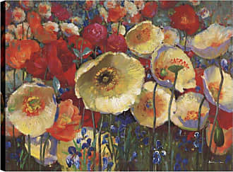 Art Maison Canada Floral Poppy IV Canvas Wall Art - HAYIMP5252ONL
