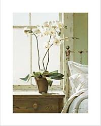 Buyartforless Buyartforless Bedside Orchid by Zhen Huan Lu 30x24 Art Print Poster Cottage Design Artwork Summer