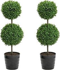 Burgundy Green and Green-3-piece Set Green /& Green Dk Admired By Nature GG7657-GREEN 9.5 Tall Artificial Desktop Potted Prayer Plants