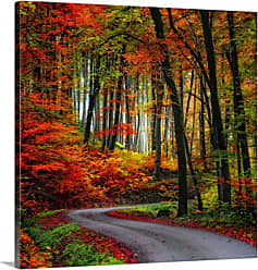Great Big Canvas Colorful Way Canvas Wall Art Print - 1047082_24_16X16_NONE