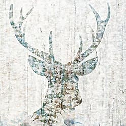 Portfolio Canvas Decor Woodland Deer I by PSDesign Wrapped Canvas Wall Art, 20x20