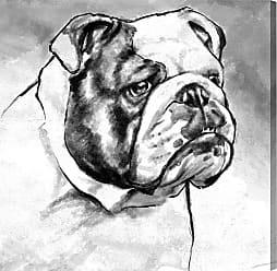 Hatcher & Ethan Hatcher and Ethan English Bulldog Canvas Art - HE15138_43X43_CANV_XXHD_AR