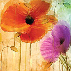 Portfolio Canvas Decor Penchant for Poppies II by Mindy Sommers 24x24x1.5, 1 Piece Canvas Wall Art