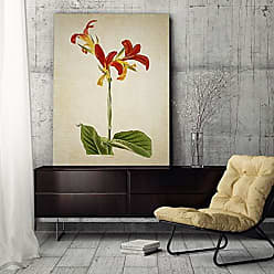 WEXFORD HOME Botanical Plate VII Gallery Wrapped Canvas Wall Art, 24x36